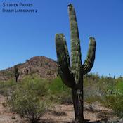 philps_desert